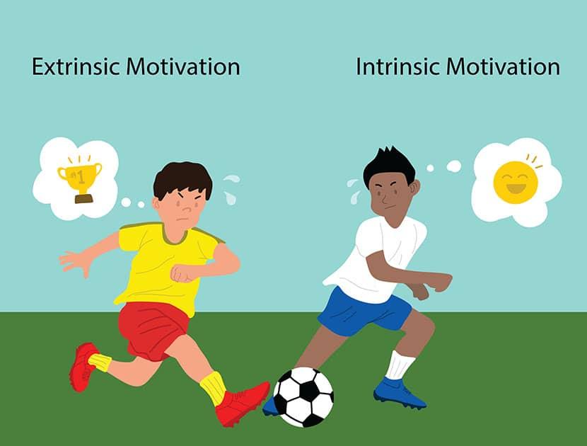 2 types of motivation