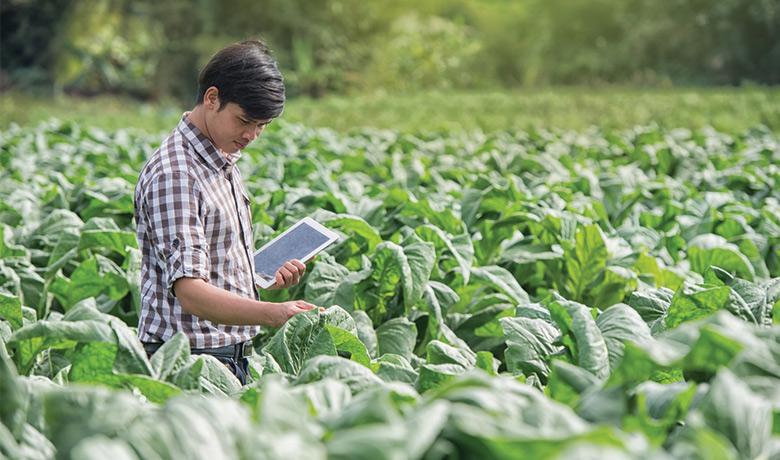 【農業 × テクノロジー】食の未来を変革する最新アグリテックサービスまとめ5選